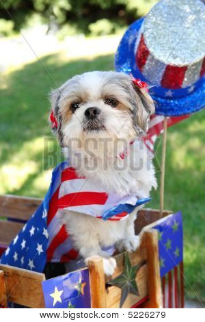 a dog in a wagon dressed up for the 4th of July poster