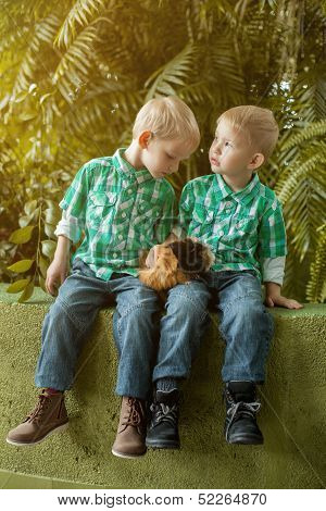 Adorable little twin brothers posing with cavy