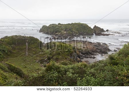 Landscape Of The Coastline At Chiloe National Park.