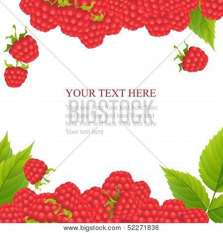 Ripe raspberries with leaves