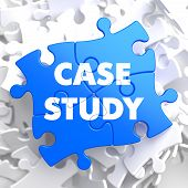 Case Study  Written on Blue Puzzle Pieces. Educational Concept. poster