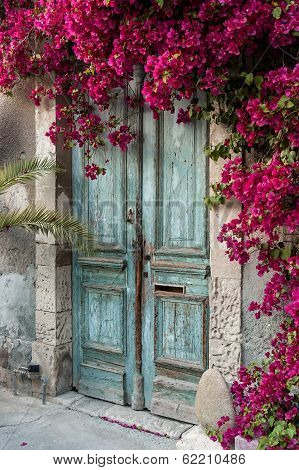 Door with bougainvillea