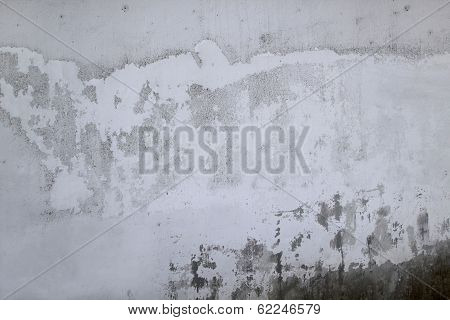 Grey old wall background Texture