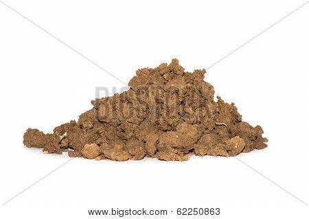 Soil On A White Background