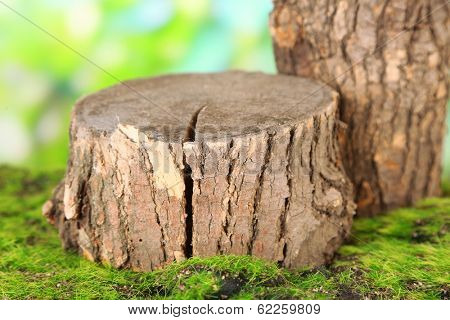 Stumps on green grass, on nature background