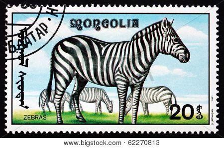 Postage Stamp Mongolia 1991 Zebra, African Animal