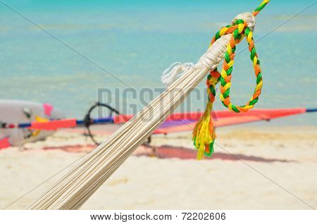 Hammock With Color