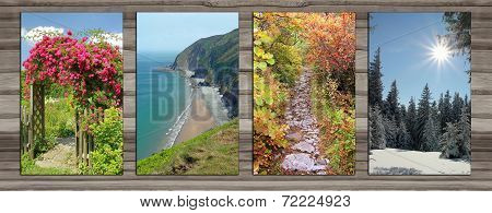 Collage - Four Seasons On Wooden Board Background - Iii