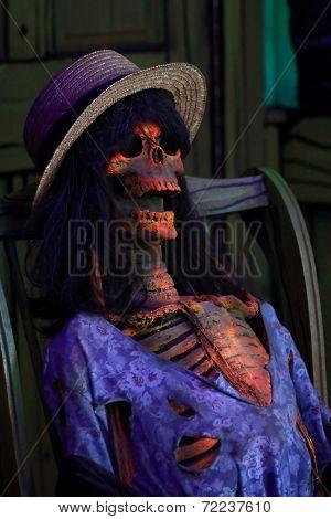 Spooky Female Skeleton