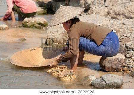Washing Gold In The River