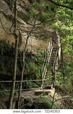 Blue Mountains Staircase