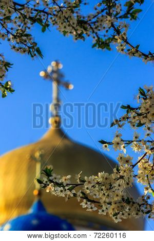 Apple Flowers On Blur Domes Of  Church
