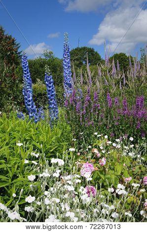 Flower Bed In English Cottage Garden