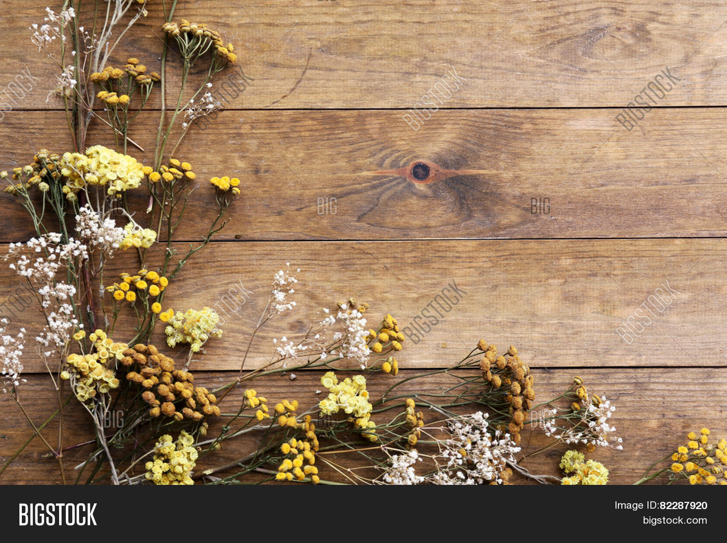 Dried Flowers On Image Photo Free Trial Bigstock