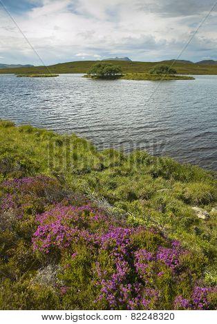 Scottish Landscape With Moorland And Loch. Highlands. Scotland