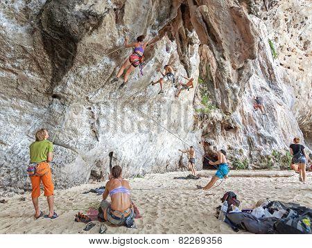 Rock Climbers Climbing The Wall.