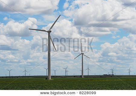 Tall modern wind turbines.