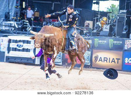 Last Cowboy Standing