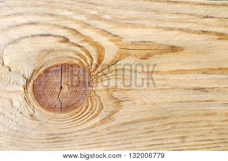 Natural Color Old Wood Grain Square Frame Texture Background Close Up