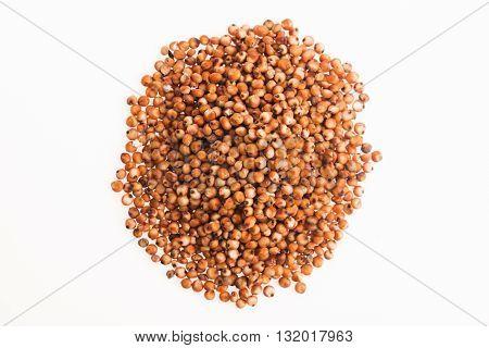 Sorghum, Rice