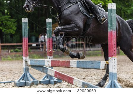 sportsman on horse overcomes barrier exercise outdoors