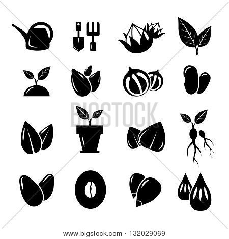 Seed and gardening vector icons. Seed gardening, nature seed, tool for gardening, seed plant, gardening trowel, growth seed icon set gardening illustration
