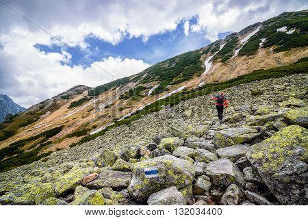 Young Woman On Mountain Track In Polish Tatra
