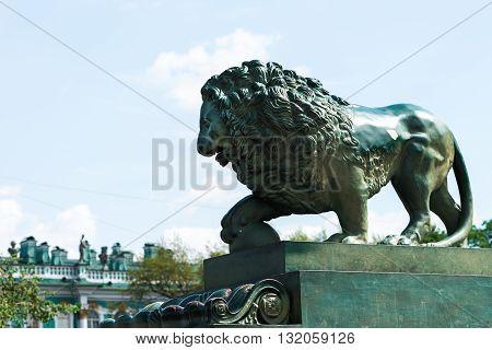 Bronze Lion In Peterburg