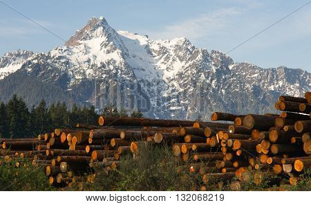 Logs wait to be processed near the base of Whitehorse Mountain in the North Cascades