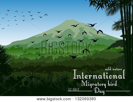 Vector illustration of Mountains landscape of tropical background with flying birds for Birds migratory day
