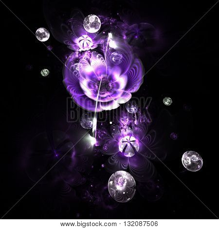 Abstract colorful purple flowers with silver drops on black background. Fantasy fractal design for postcards or t-shirts.