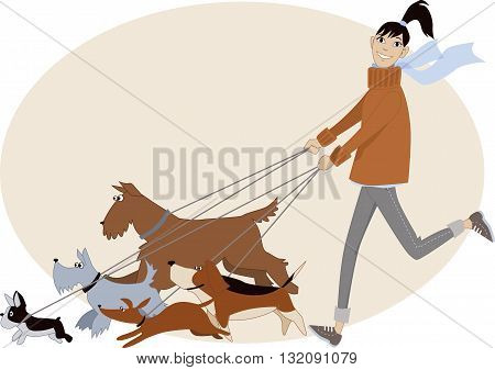 Dog walker. Young woman running with a group of dogs of different breeds, vector cartoon, no transparencies
