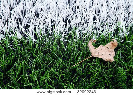 End Of Football Season. Dry Leaf On Ground Of Plastic Green Football Turf With Painted White Line .