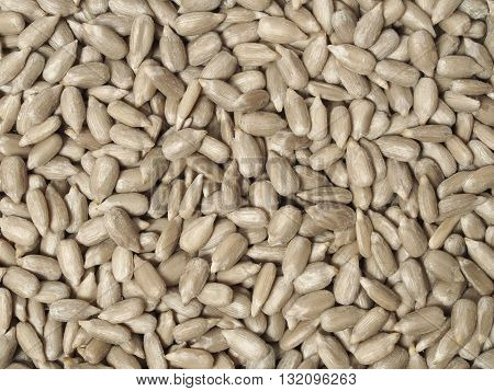 Sunflower seeds can be used as a background