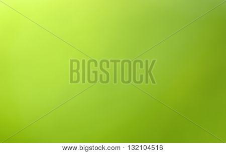 Green blurred background in sunlight