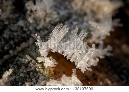 Macro photography of winter hoarfrost and waterdrops