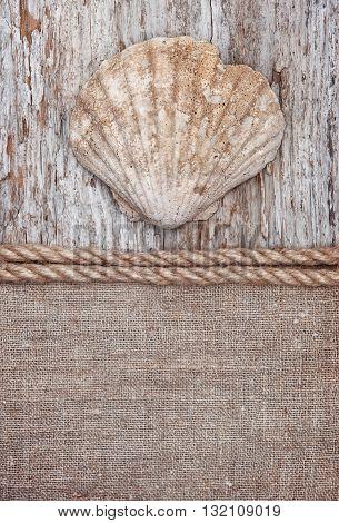 Grunge Background With Big Seashell, Rope On Sackcloth