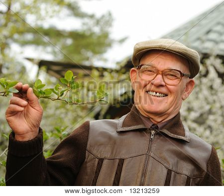 Happy elderly man in a garden poster