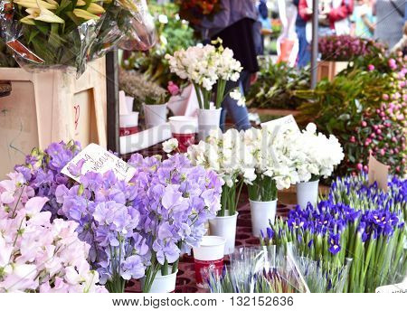 Flower market. Market stall with various fresh flowers and selective focus. People walking across the market.