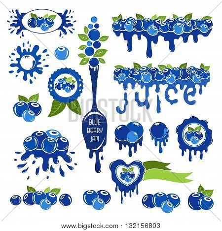 Blueberry design elements set. Set of borders, frames, labels and other elements from blueberries.