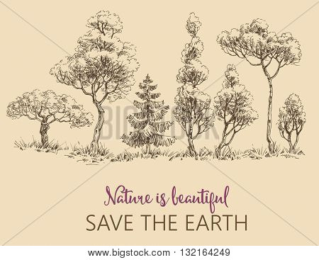 Line of trees, Save the Earth card