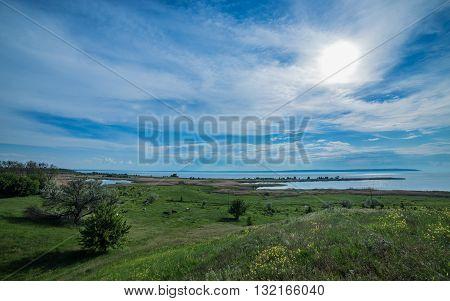 lawn landscape cow time lapse ukraine vilagge
