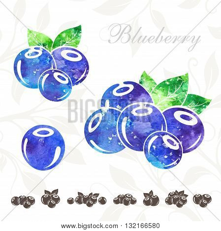 Blueberry icons set. Blueberry with watercolor texture