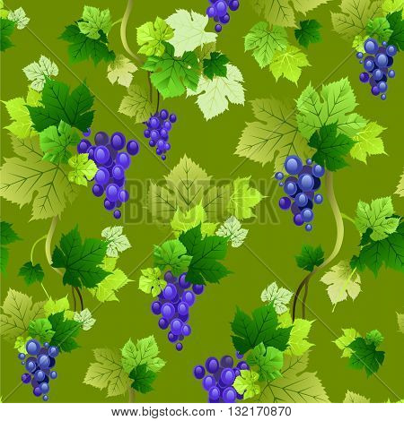 Grapes pattern on green background. The natural design for banner, ticket, leaflet and so on.