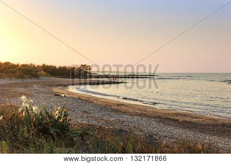 Summer landscape: a nature reserve of Torre Guaceto.BRINDISI (Apulia)-ITALY-Mediterranean maquis: a nature sanctuary between the land and the sea.