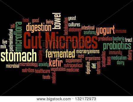 Gut Microbes, Word Cloud Concept 6