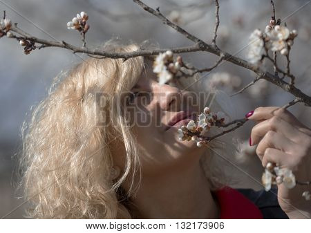 Portrait of beautiful blondie woman with curly hair near of the blossom apricot tree.