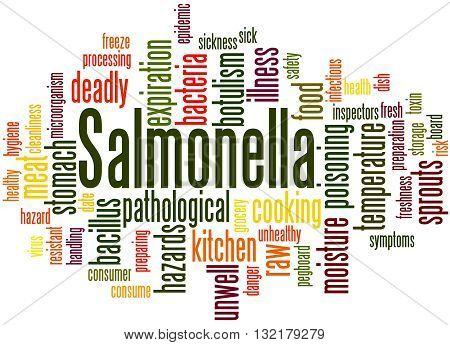 Salmonella, Word Cloud Concept 6