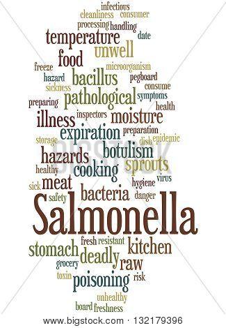 Salmonella, Word Cloud Concept 8