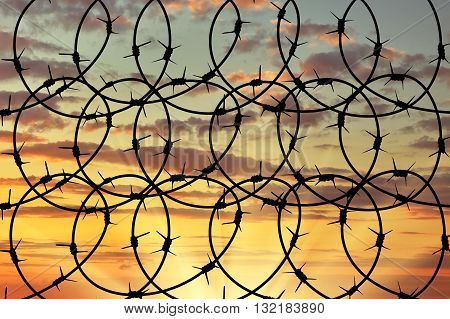 Silhouette Of Barbed Wire